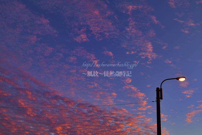鱗雲残照。_f0235723_20323389.jpg