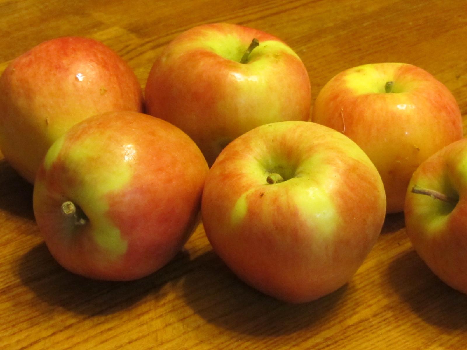 りんごのはなし_a0173527_14264296.jpg