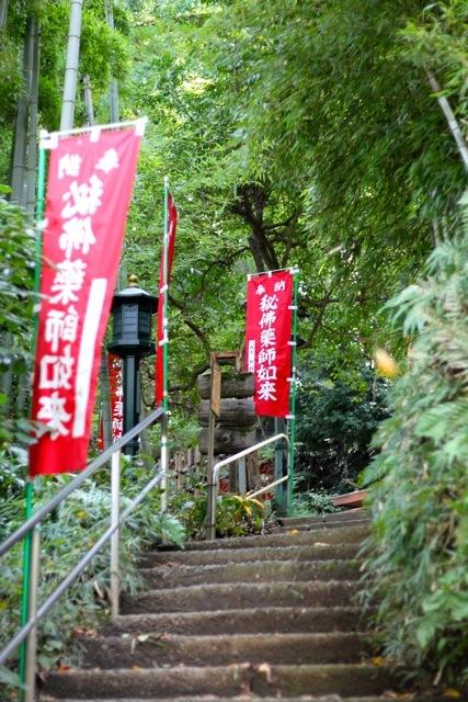 【薬師池公園】【七国山・そば畑】_f0348831_07113477.jpg