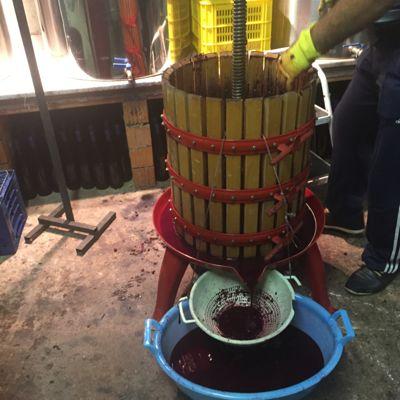 大雨、ワインの仕事、誕生日_d0136540_7305466.jpg