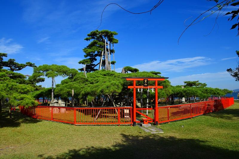 ②『唐崎の夜雨』で名高い唐崎の松(琵琶湖)20151003_e0237645_15162482.jpg