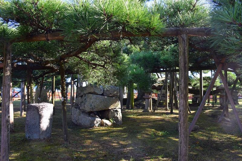 ②『唐崎の夜雨』で名高い唐崎の松(琵琶湖)20151003_e0237645_15171596.jpg