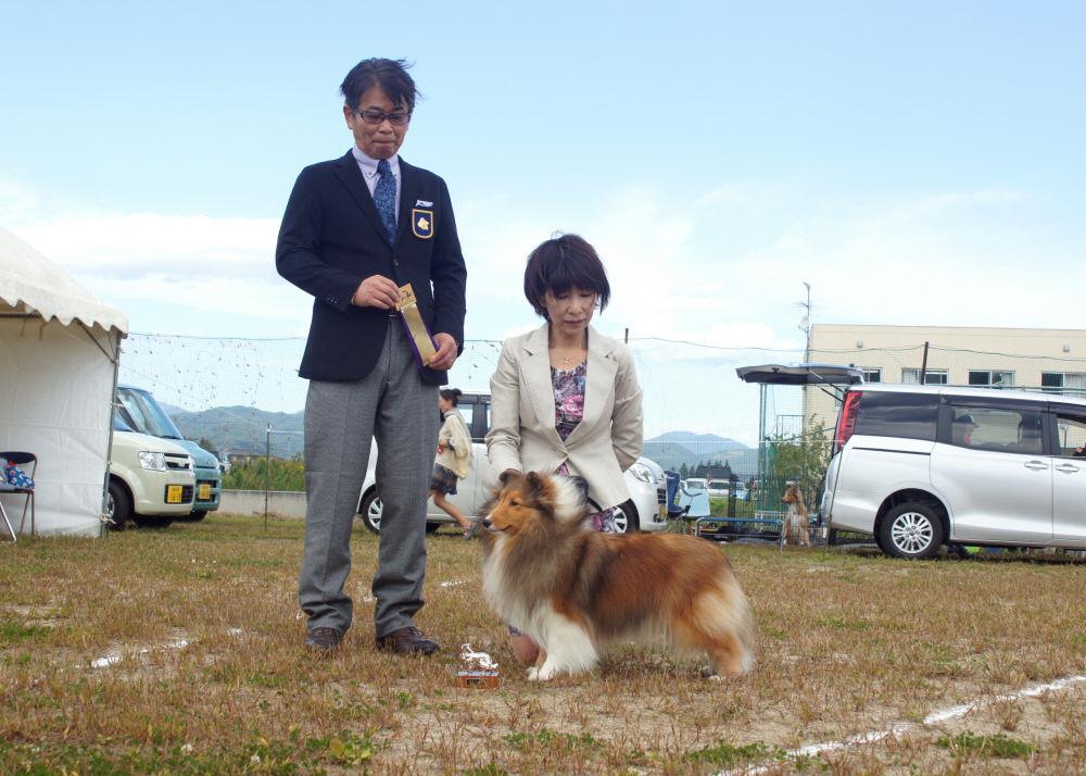 10.4  JCC fukusima_a0139367_08105.jpg