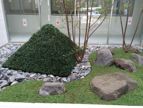 中庭が完成いたしました_d0174072_7433496.jpg