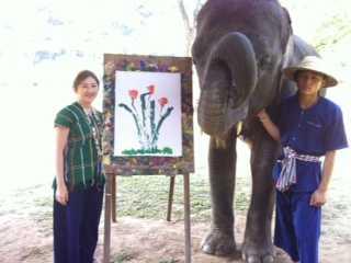 象と、田植え!?_d0339680_11451197.jpg