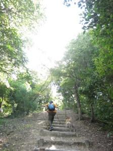えひめ森林公園_e0012580_14183327.jpg