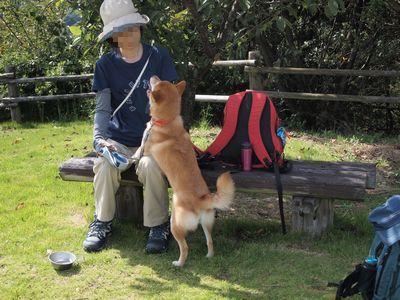 えひめ森林公園_e0012580_14284412.jpg