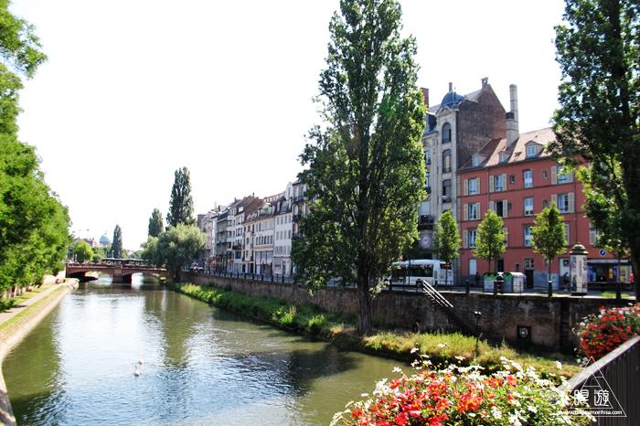 464 Strasbourg ~ストラスブールの野鳥~_c0211532_14372068.jpg