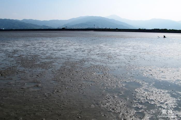 470 曽根干潟 ~カブトガニの幼生に出会う~_c0211532_22121632.jpg