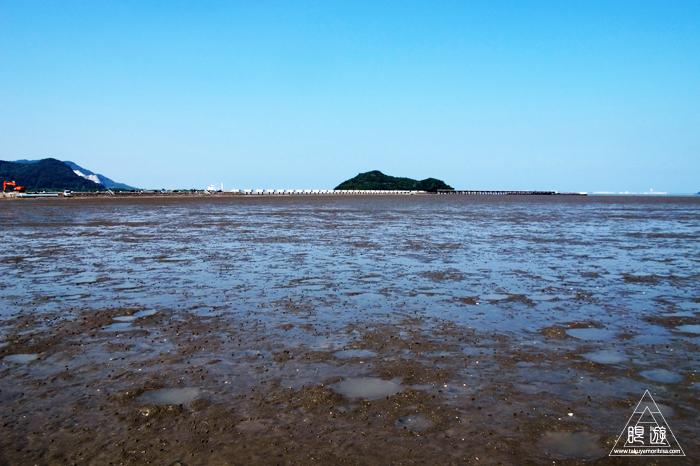 470 曽根干潟 ~カブトガニの幼生に出会う~_c0211532_221243.jpg