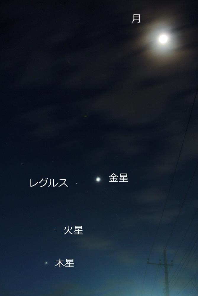 金星・レグルス・火星・木星カルテット(2015年10月7日)_e0089232_06165324.jpg