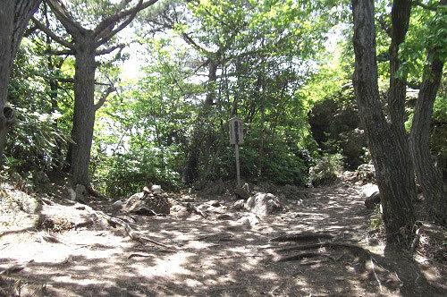 御岩神社3 頂上にある石2つ_a0064067_15114635.jpg