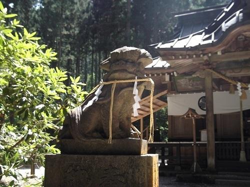 御岩神社1 御岩神社本殿へ_a0064067_15322316.jpg