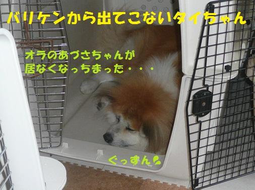 f0121712_16373215.jpg
