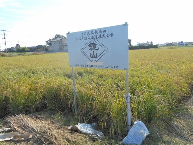 稲刈り_d0091122_2312832.jpg