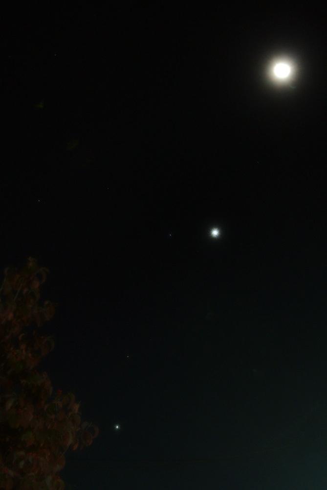 月、金星、レグルス、火星、木星クインテット(2015年10月8日)_e0089232_05100604.jpg
