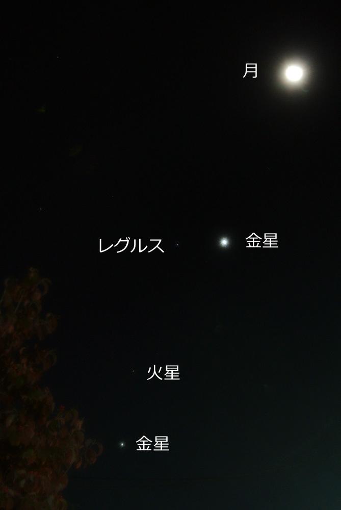 月、金星、レグルス、火星、木星クインテット(2015年10月8日)_e0089232_05100610.jpg
