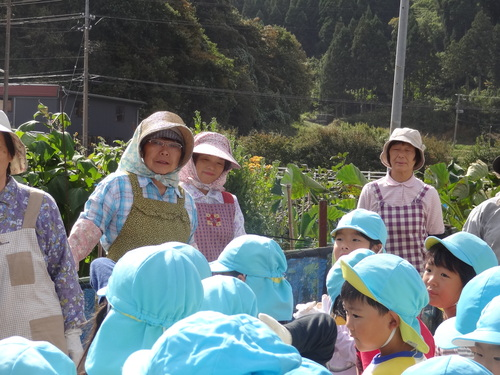 ゆり組さん さつま芋掘りに行ってきました!_d0166047_11312229.jpg