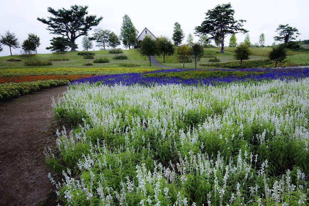 ガーデン、その1_c0077395_18544798.jpg