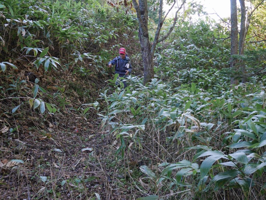 恵庭岳、10月7日-初めての登山ルートで-_f0138096_11541950.jpg