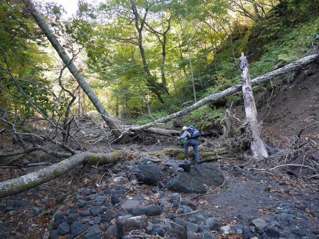 恵庭岳、10月7日-初めての登山ルートで-_f0138096_1157347.jpg