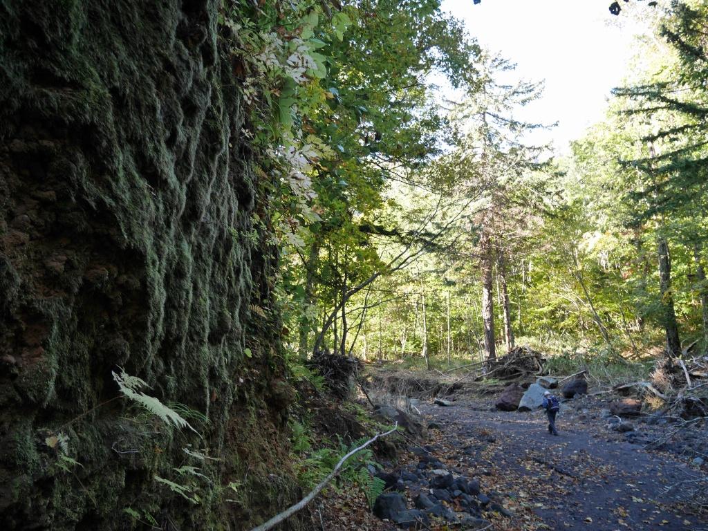 恵庭岳、10月7日-初めての登山ルートで-_f0138096_11574666.jpg
