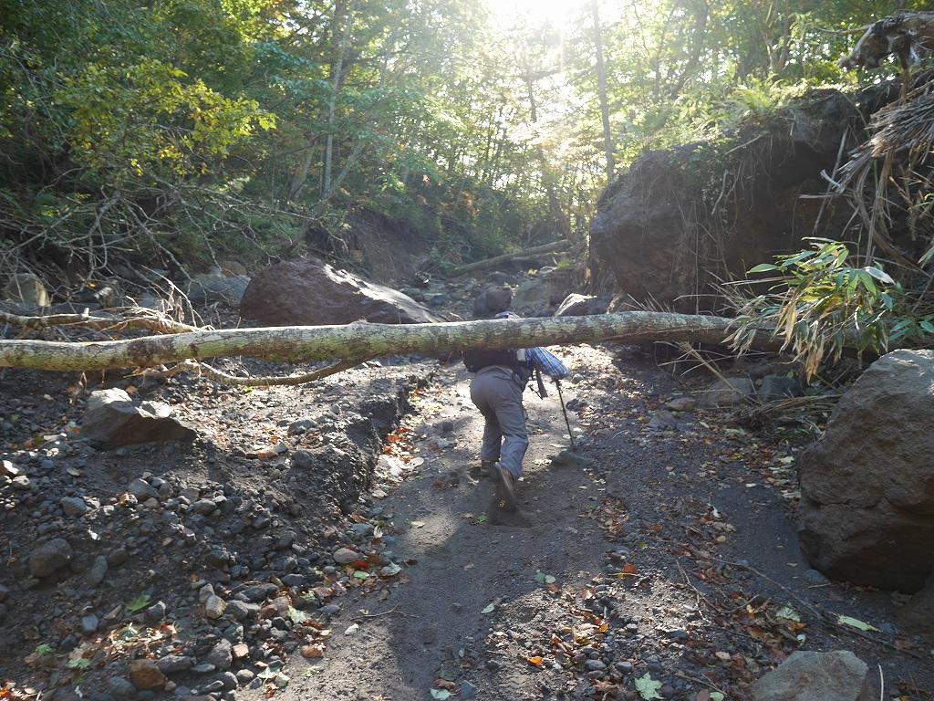 恵庭岳、10月7日-初めての登山ルートで-_f0138096_11575425.jpg