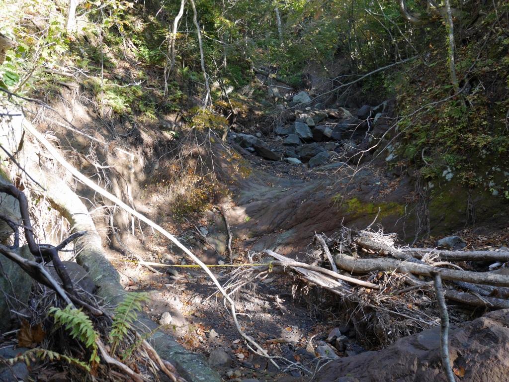 恵庭岳、10月7日-初めての登山ルートで-_f0138096_11582611.jpg