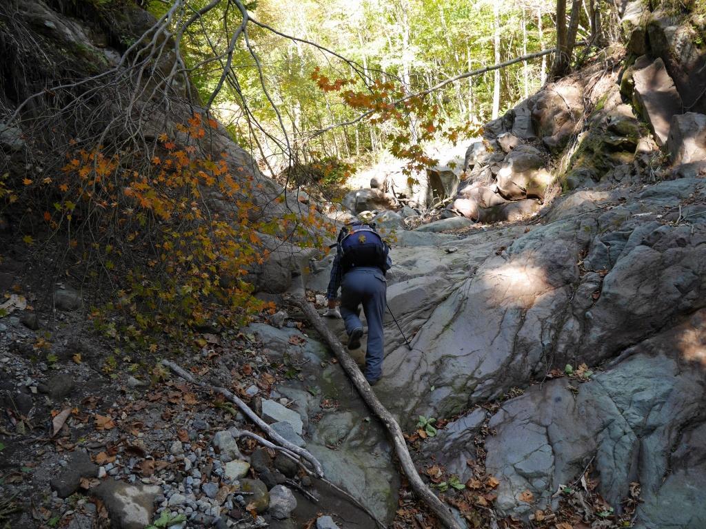恵庭岳、10月7日-初めての登山ルートで-_f0138096_11584275.jpg