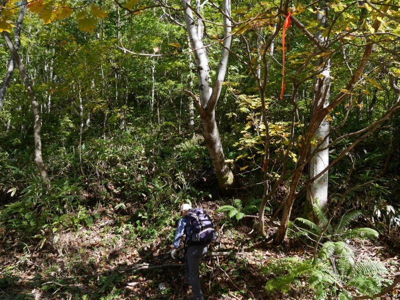 恵庭岳、10月7日-初めての登山ルートで-_f0138096_1159016.jpg