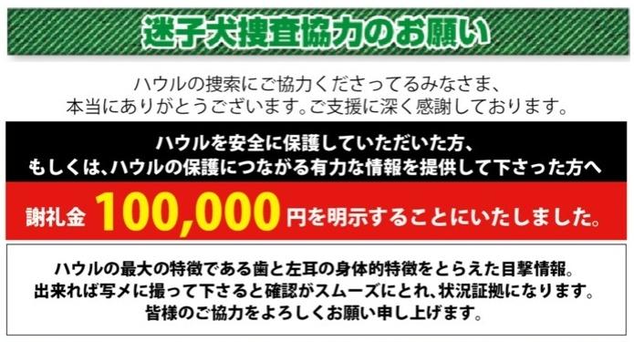 綾瀬市保護情報_e0005411_10133970.jpg