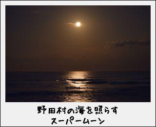 c0259934_10063276.jpg