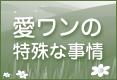 d0314045_1750510.jpg