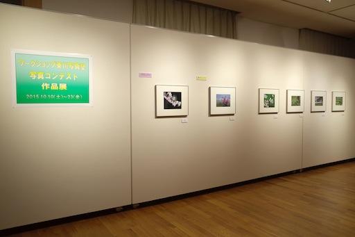 東川町文化ギャラリーで開催中の写真展_b0187229_1415191.jpg