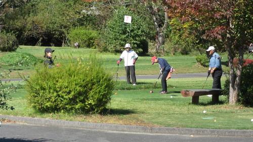 2015第13回パークゴルフ定期大会の様子_b0219993_17473310.jpg