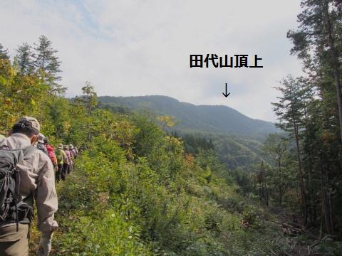 b0147224_2012990.jpg