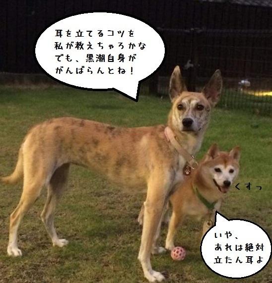 f0253473_05273272.jpg