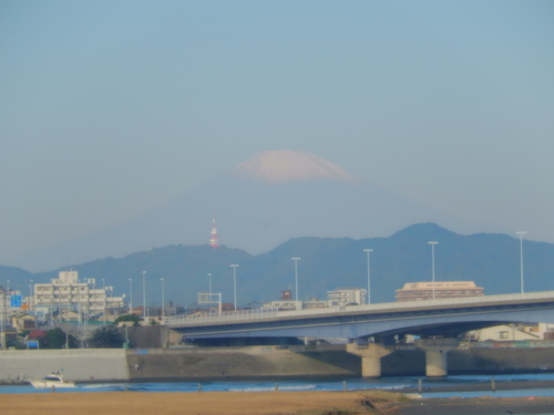 初冠雪の富士山....野菜が草に埋もれて.._b0137932_940511.jpg