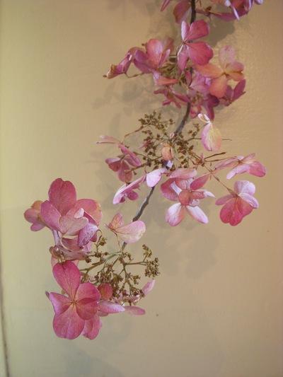 お花のシャンデリア。。。_a0229658_17462686.jpg