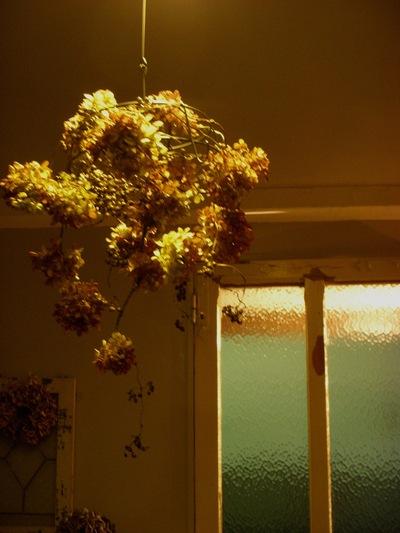 お花のシャンデリア。。。_a0229658_1883468.jpg