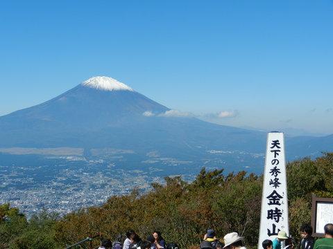 箱根金時山の花  Vol.82  富士山初冠雪_e0024094_1744270.jpg