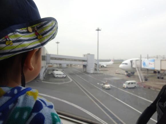 沖縄・ホテルムーンビーチ編~1日目~_b0268916_12332752.jpg