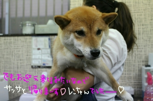 kiri♡_b0130018_01135012.jpg