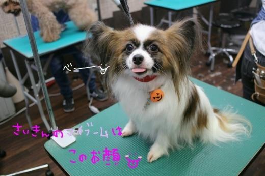 kiri♡_b0130018_01192621.jpg