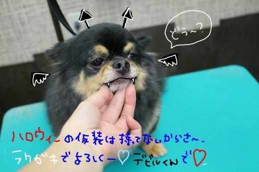 kiri♡_b0130018_01255113.jpg