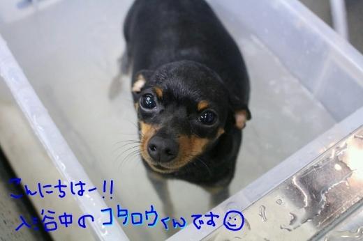 kiri♡_b0130018_01344205.jpg