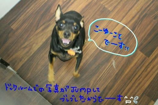 kiri♡_b0130018_01345599.jpg