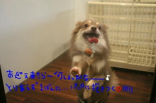 kiri♡_b0130018_13080849.jpg
