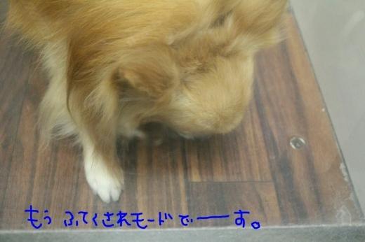 kiri♡_b0130018_13412998.jpg