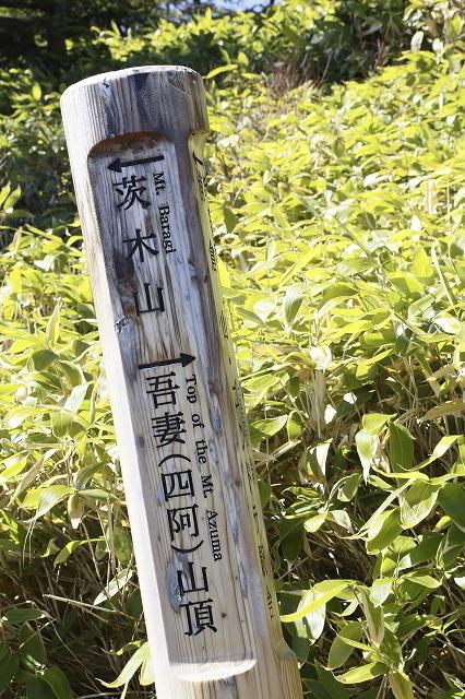 錦秋の山歩き@四阿山 2015.10.12(月)_c0213096_21375768.jpg